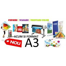 Scanare / copiere / printare color A3